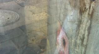 Achter glas 2
